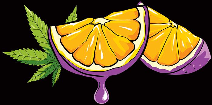 Purple Tangie - Oranges & Leaf
